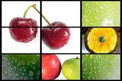 Porte des fruits la composition Image libre de droits