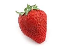 Porte des fruits la fraise Photos libres de droits