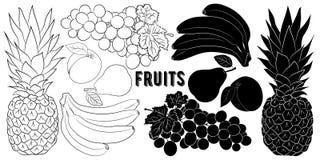 Porte des fruits la silhouette et le croquis illustration stock