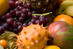 Porte des fruits le compostion Photos stock