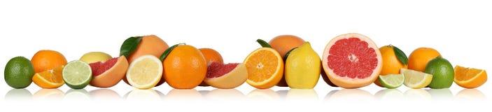 Porte des fruits le pamplemousse de citron d'oranges dans une rangée Photographie stock