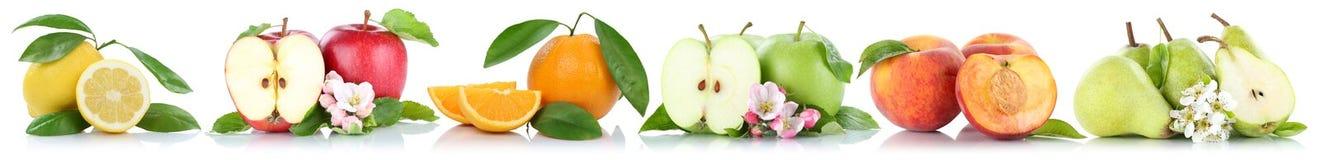 Porte des fruits les pêches oranges d'oranges de pommes de pêche de citron de pomme dans une rangée Images libres de droits