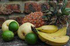 porte des fruits tropical Photographie stock libre de droits