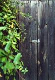 Porte en bois rurale, couverte de feuilles image stock