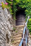 Porte en bois sur les escaliers en pierre Photos libres de droits