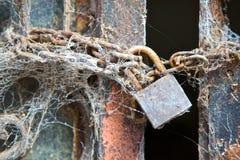 Porte enchaînée et padlocked en métal couverte dans les toiles d'araignée Photographie stock