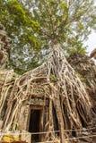 Porte entourée par la racine vieille d'un siècle d'arbre, merci temple de Prohm, Angkor Thom, Siem Reap, Cambodge Photographie stock libre de droits