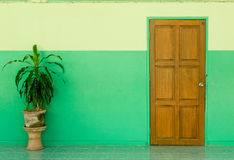 Porte et mur vert avec l'usine Photos stock