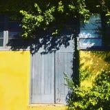 Porte francesi, pareti gialle, piante che sorpassano Immagini Stock Libere da Diritti