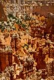 Porte-malheur en Bryce Canyon National Park, Utah Photos stock