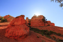 Porte-malheur en canyon rouge en Utah, Etats-Unis Images stock