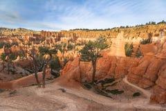Porte-malheur rouges sur la traînée de royaume des fées en Bryce Canyon Photographie stock libre de droits