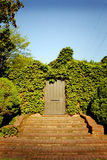 Porte mystérieuse Photographie stock