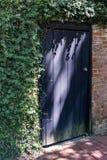 Porte pourpre dans le mur de briques couvert de lierre Photo libre de droits