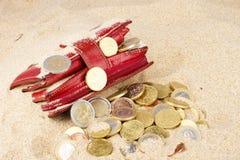 Portefeuille avec d'euro pièces de monnaie dans le sable Image stock