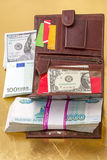 Portefeuille avec des cartes de crédit de monnaie fiduciaire et Images stock