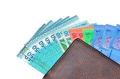Portefeuille d'argent liquide d'argent Photo libre de droits