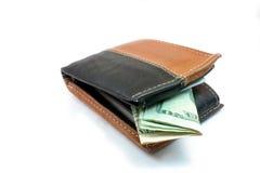 Portefeuille en Contant geld Stock Afbeelding