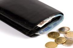 Portefeuille met geld Stock Afbeelding