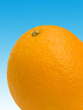 Portent des fruits une orange Photos libres de droits