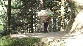 Porter is carrying a cargo in the Himalayas. The porter bears a heavy load. Track to the base camp of Everest in the Himalayas. Sagarmatha National Park, Nepal stock video footage