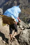 Porter in nepal. Annapurna, Nepal - 19 March 2008. Porter carrying heavy load on his back Royalty Free Stock Images
