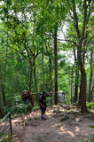 Porter on Phu Kradueng trail Royalty Free Stock Photo