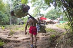 Porter on Phu Kradueng trail Stock Photography