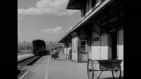 Porter pushing luggage cart through train station stock video
