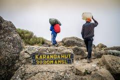 Porter trekking Mount Kilimanjaro, Tanzania Stock Image