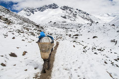 Porter on the way to Dingboche royalty free stock image