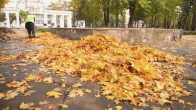 Portero de sexo femenino en hojas caidas que barren uniformes en el parque, trabajo mal pagado, crisis almacen de video