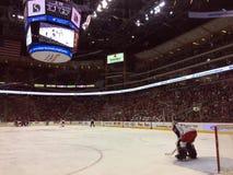 Portero profesional del hockey Fotografía de archivo libre de regalías