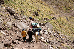 Porters in the Atlas Mountains (Morocco) Stock Photos
