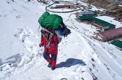 Porters with heavy load,  Nepal Royalty Free Stock Photography