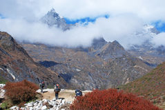Porters in Himalayas Royalty Free Stock Image
