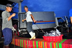 Porters at the Hon Ro seaport are loading baskets of fishes onto the truck to a local processing plant in Nha Trang city Royalty Free Stock Photography