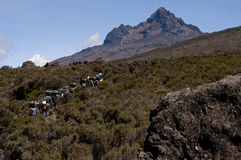 Porters in moorland, Mawenzi, Kilimanjaro Royalty Free Stock Images