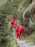 Porters. The Red Porters on the Inca Trail in motion Stock Photos
