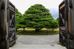 Portes au parc Photographie stock libre de droits