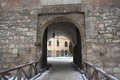Portes de château dans Lvov Images stock