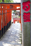 PORTES DE TORII AU TEMPLE D'UENO, TOKYO Photo stock