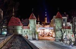 Portes de ville de Moyens Âges avec des tours Photographie stock libre de droits