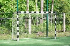 Portes du football Photo stock