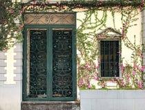 Portes et fenêtres de bordure de fleurs Photographie stock libre de droits