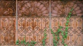 Portes et feuilles Photographie stock libre de droits