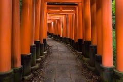 Portes rouges célèbres du tombeau de Fushimi Inari Images stock