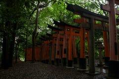 Portes rouges célèbres du tombeau de Fushimi Inari Photos stock