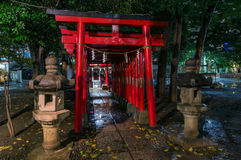Portes rouges de Torii de tombeau de Hanazono Shinto, Shinjuku, Tokyo, Japa Images libres de droits
