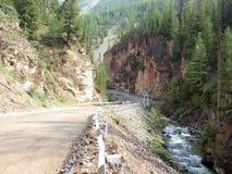 Portes rouges en montagnes d'Altai Photographie stock